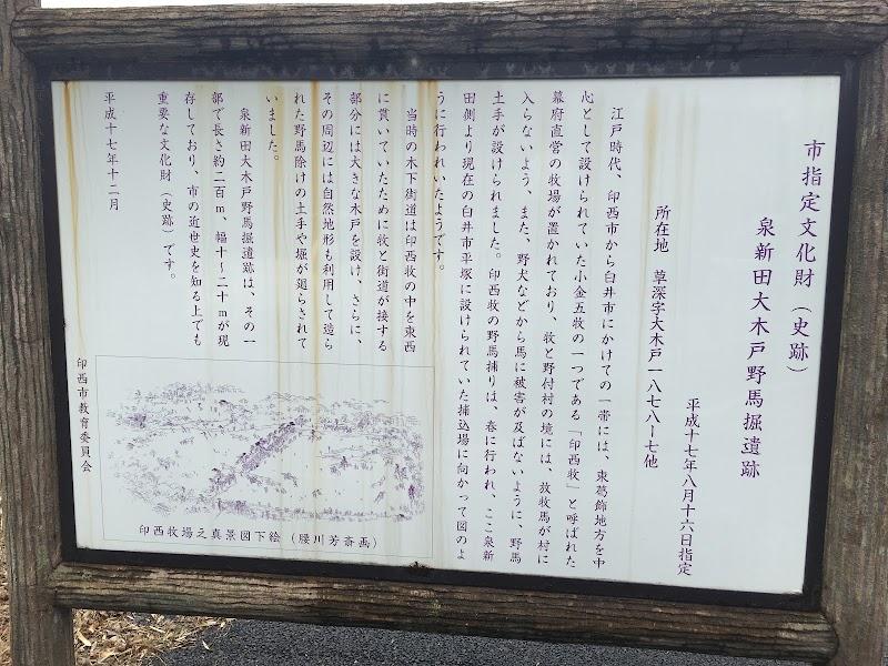 泉新田大木戸野馬掘遺跡