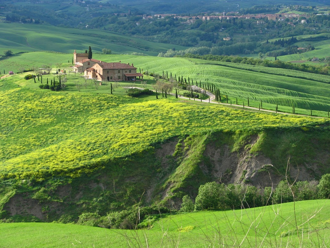 Very Tuscany - Wine Tour & Sightseeing Tour in Tuscany