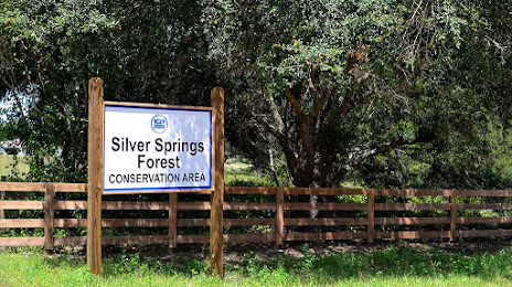 Home Cleaning Silver Springs