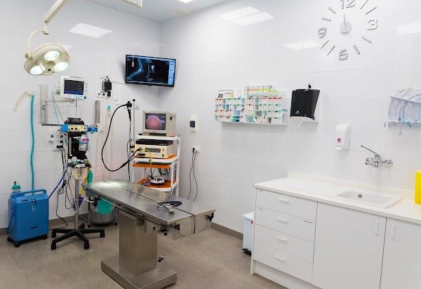 Clínica Veterinaria Fisac Ferrández