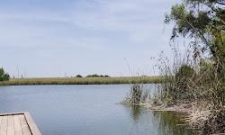 Hutto Lake Park
