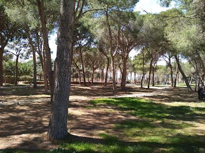 El Parc del Pinaret