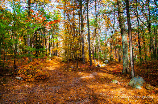 State Park «Blue Hills Reservation», reviews and photos, 695 Hillside St, Milton, MA 02186, USA