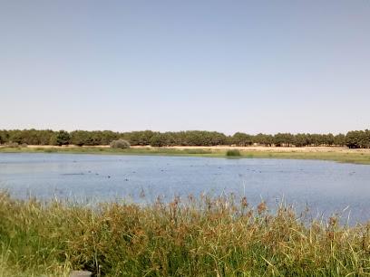 Lagunas de Cantalejo