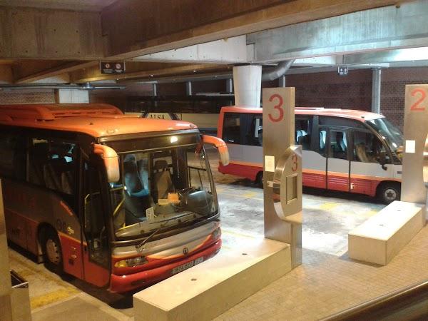 CASANOVA autobuses