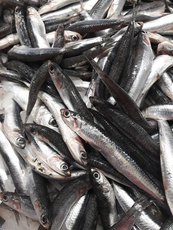 Peixos Camps