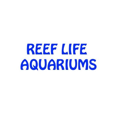Tropical Fish Store «Reef Life Aquariums», reviews and photos, 5511 US-280 #310, Birmingham, AL 35242, USA