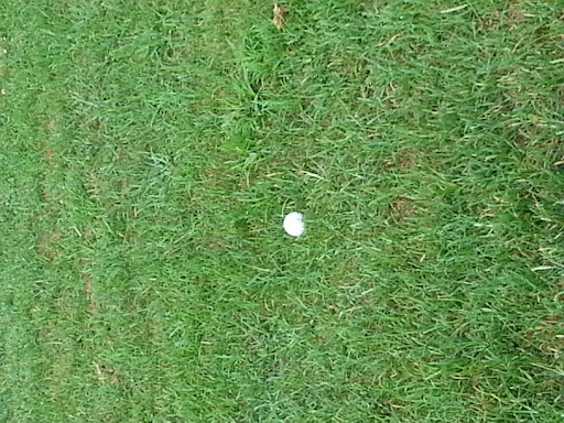 Golf Course «Freeway Golf Course», reviews and photos, 1858 Sicklerville Rd, Sicklerville, NJ 08081, USA