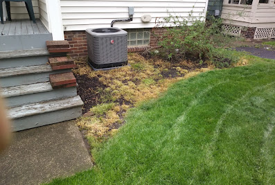 Sunshine Landscaping Co – Landscaping, Landscaping Contractor, Landscape Company, Landscaping Maintenance, Professional Landscape Services in Cleveland Heights OH