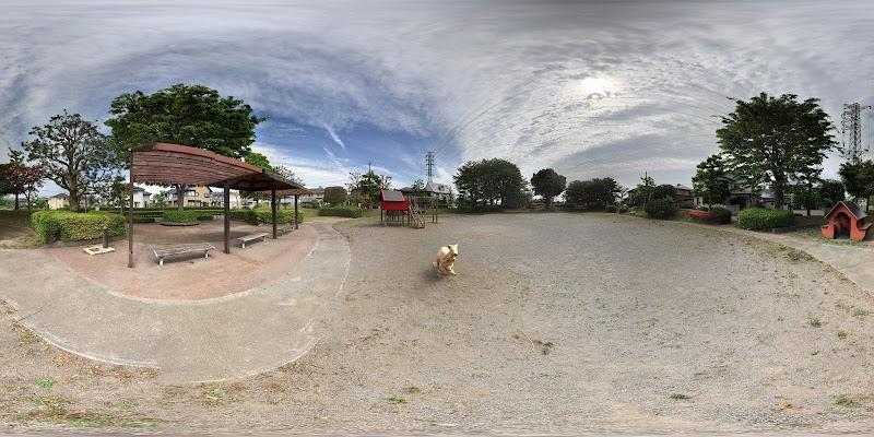 カンガルー公園