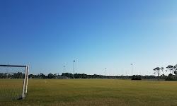 Mitchell Ellington Park