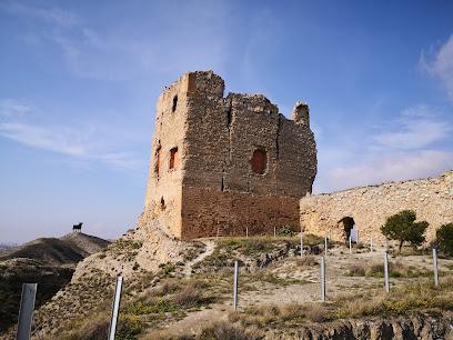 Castillo de Alfajarín
