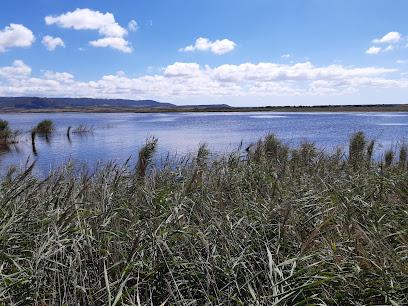 Observatorio de aves de la laguna de Pitillas