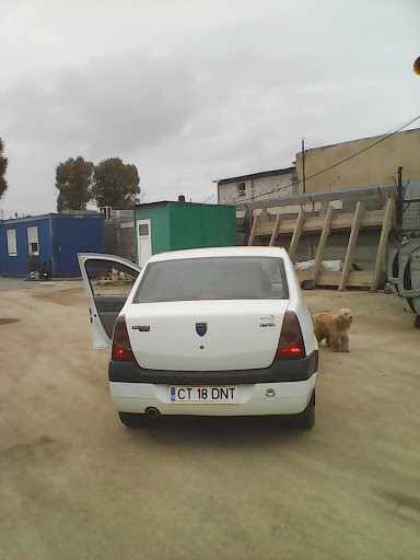 Auto Check Center-Union Serv