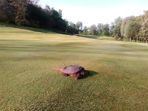 Golf Club «Manhattan Woods Golf Club», reviews and photos, 1 Sergeant Ahlmeyer Dr, West Nyack, NY 10994, USA