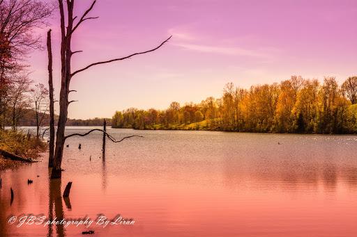 Recreation Center «Go Ape Zip Line & Treetop Adventure - Rock Creek Regional Park», reviews and photos, 6129 Needwood Lake Dr, Rockville, MD 20855, USA