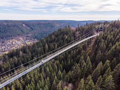 WildLine Hängebrücke