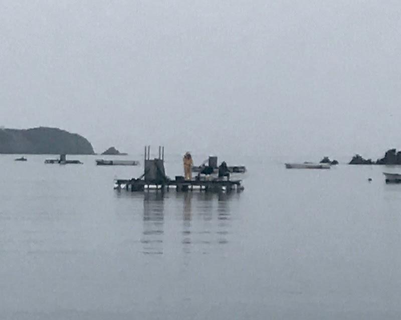 安乗 釣 センター