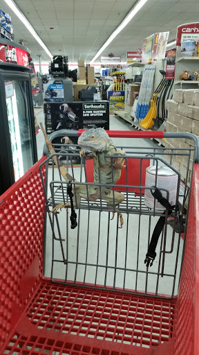 Home Improvement Store «Tractor Supply Co.», reviews and photos, 293 US-206 #15A, Flanders, NJ 07836, USA