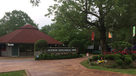 Tree Service in Jackson, MS