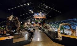 Houston Museum of Natural Science at Sugar Land