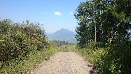Puncak Hutan TlagaMlaya