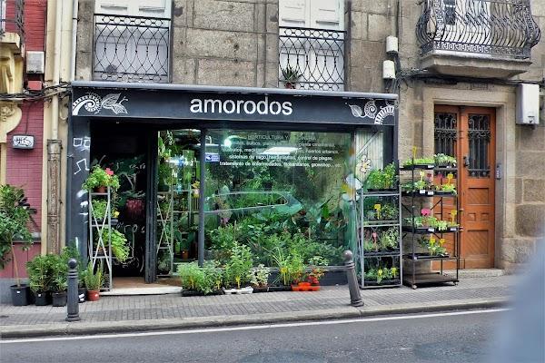Amorodos, horticultura y jardineria