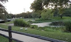 Rosemary Denny Park