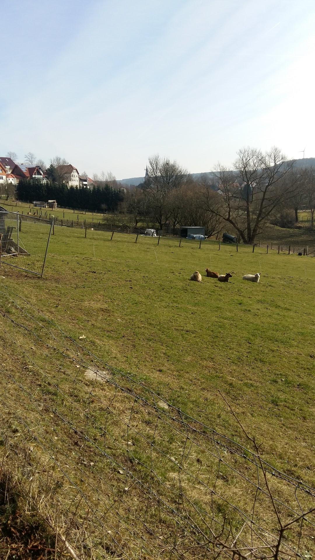 Paderborn an 44 der talle ALMAX GbR