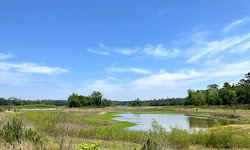 Spring Creek Nature Trail