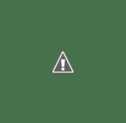 Pont de la Bisbal de Falset
