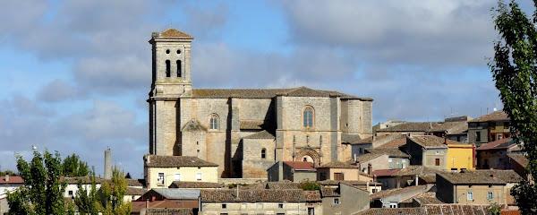 Parroquia De San Pedro En Cátedra