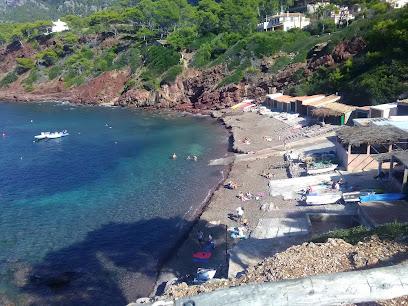 Playa Port des Canonge
