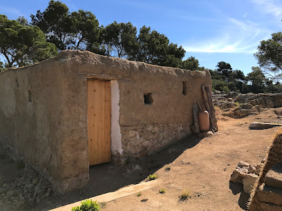 Poblat ibèric de Turó Rodó