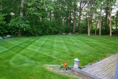 RK Lawn & Landscape
