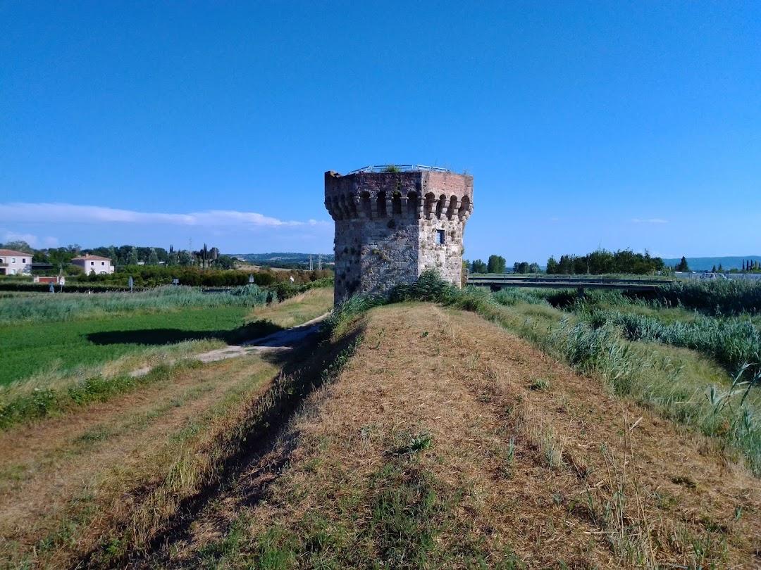 Torre Beccati Questo