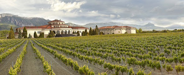 Campillo winery