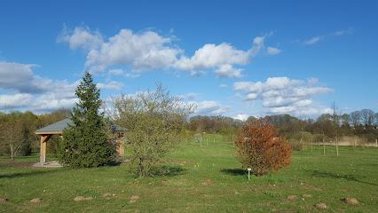 Arboretum Crivitz