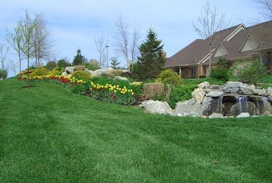 Executive Landscape Services LLC