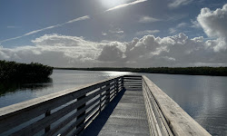 Wildcat Cove Preserve