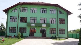 Şcoala Gimnazială Mihai Eminescu Bradu
