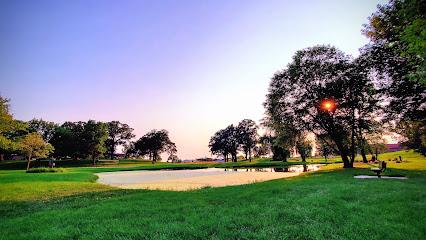 Tree Services in Huntley, IL