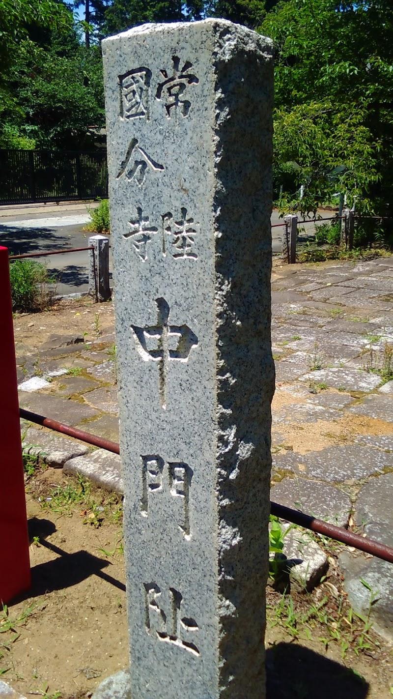 常陸国分寺中門跡