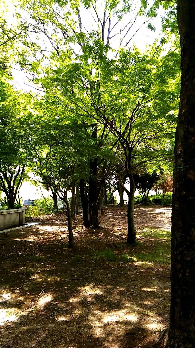 川島スポーツ公園多目的グラウンド