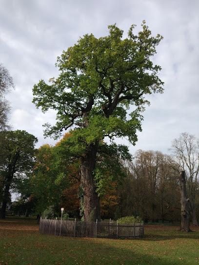 Hannover Tiergarten