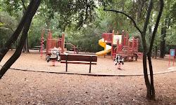 Cy-Champ Park