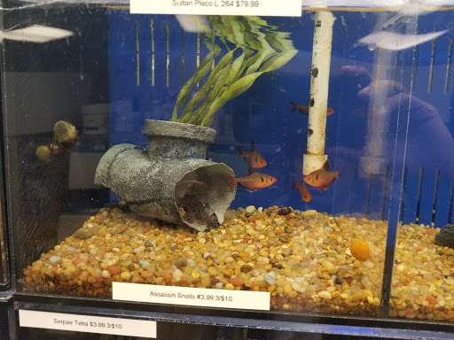 Pet Store «Aquaridise», reviews and photos, 415 NJ-18, East Brunswick, NJ 08816, USA