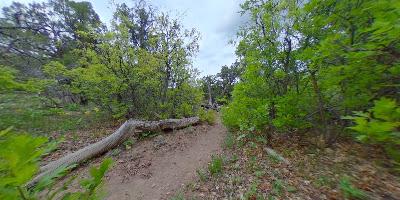 N Vista Trail, Crawford, CO 81415, USA