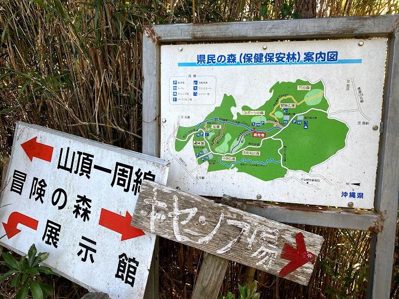 自然満喫コース(登山コースC)