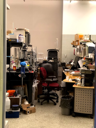 University department MIT Department of Mechanical Engineering